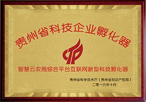 贵州省科技企业孵化器
